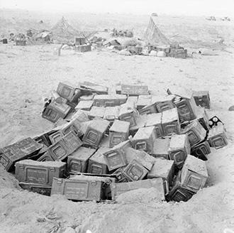 Empty 25lb Shell Boxes