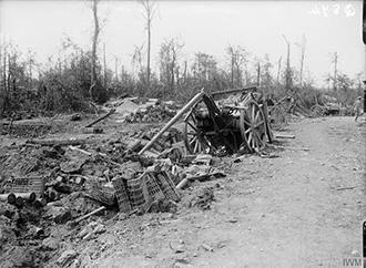 Mametz Wood, July 1916