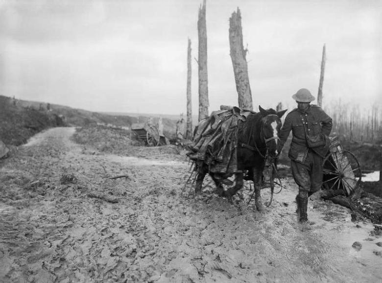 Pack horse through mud, Beaumont Hamel